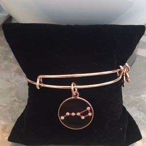 Adorable Alex and Ani bracelet NWOT Big Dipper.
